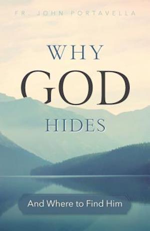 Bog, paperback Discovering the Hidden God af John Portavella