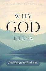 Discovering the Hidden God