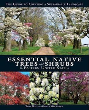 Essential Native Trees and Shrubs for the Eastern United States