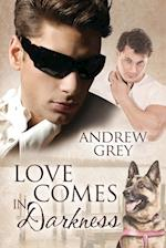 Love Comes in Darkness af Andrew Grey