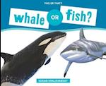 Whale or Fish? (This or That)