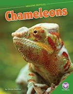 Chameleons (Amazing Reptiles)