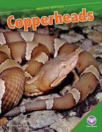Copperheads (Amazing Reptiles)