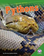 Pythons af Christine Zuchora-Walske