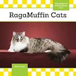 Ragamuffin Cats (Cats)