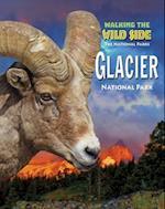 Glacier (National Parks Set 5 Volume Set New 2016)