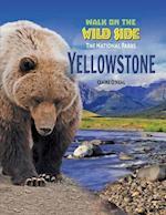 Yellowstone (National Parks Set 5 Volume Set New 2016)
