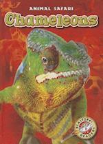 Chameleons (Animal Safari)