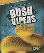 Bush Vipers (AMAZING SNAKES)