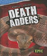Death Adders (AMAZING SNAKES)