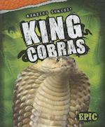 King Cobras (AMAZING SNAKES)