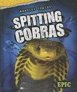 Spitting Cobras (AMAZING SNAKES)