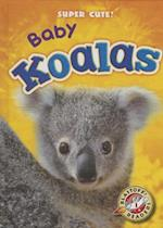 Baby Koalas (Blastoff Readers Level 1)