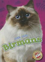 Birmans (Blastoff Readers Level 2)