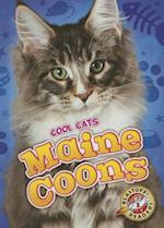 Maine Coons (Blastoff Readers Level 2)
