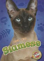 Siamese (Blastoff Readers Level 2)