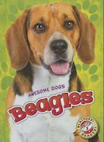 Beagles (Blastoff Readers Level 2)