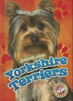 Yorkshire Terriers (Blastoff Readers Level 2)