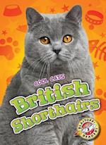 British Shorthairs (Blastoff Readers Level 2)