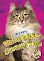 Norwegian Forest Cats (Blastoff Readers Level 2)