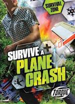 Survive a Plane Crash (Survival Zone)