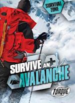 Survive an Avalanche (Survival Zone)