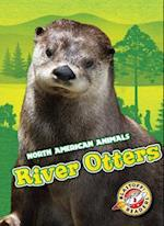 River Otters (North American Animals, nr. 42)