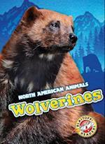 Wolverines (North American Animals, nr. 42)