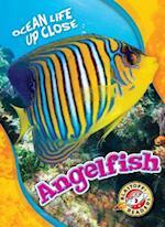Angelfish (Ocean Life Up Close, nr. 28)