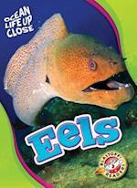 Eels (Ocean Life Up Close, nr. 28)