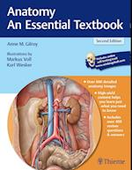 Anatomy - An Essential Textbook (Thieme Illustrated Reviews)