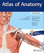 Atlas of Anatomy: Latin Nomenclature (3rd ed. 2017)