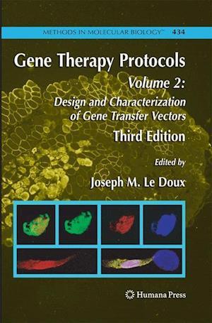 Gene Therapy Protocols : Volume 2: Design and Characterization of Gene Transfer Vectors