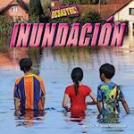 Inundacion / Flood
