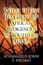 What It Felt to Grow Up African Indigenous in Southern Africa af Athanasius-John T. Nkomo