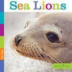 Sea Lions (Seedlings)