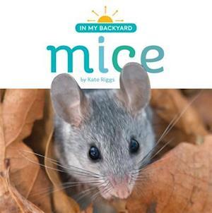 Bog, paperback Mice af Kate Riggs