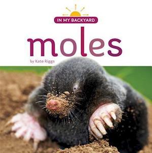 Bog, paperback Moles af Kate Riggs