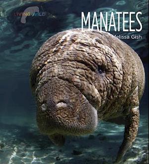 Bog, paperback Manatees af Melissa Gish