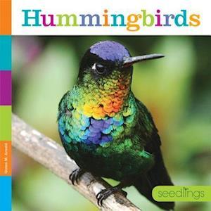 Bog, paperback Hummingbirds af Quinn M. Arnold