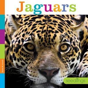 Bog, paperback Jaguars af Quinn M. Arnold