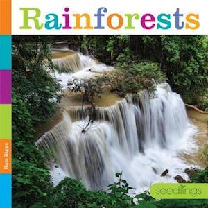 Bog, paperback Rainforests af Kate Riggs