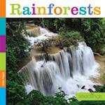 Rainforests (Seedlings)