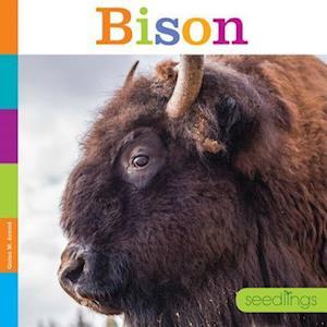 Bog, paperback Bison af Quinn M. Arnold, Kate Riggs