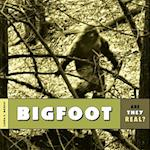 Bigfoot (Are They Real)