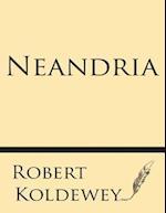 Neandria af Robert Koldewey