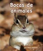 Bocas de animales / Animal Mouths