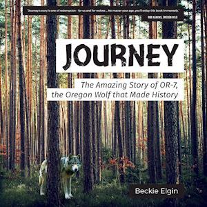 Bog, paperback Journey af Beckie Elgin