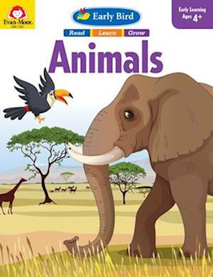 Bog, paperback Early Bird Animals af Evan-Moor Educational Publishers