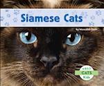 Siamese Cats (Cats)